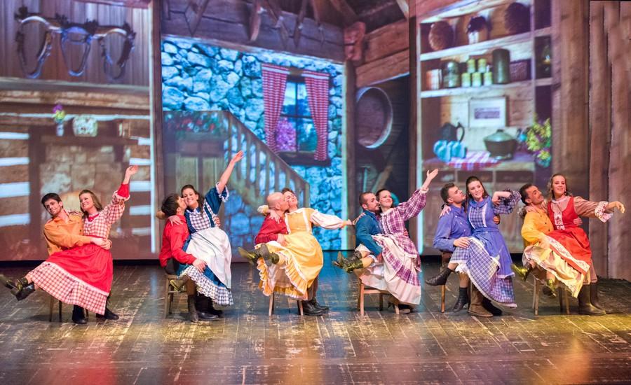 In sette cerca moglie - Il musical